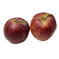 Apple Delhi