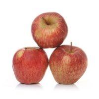 Apple Shimla1